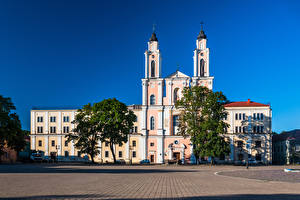 Pictures Lithuania Kaunas Church Town square Trees Jesuit Church of St. Francis Xavier Cities