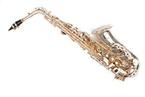 Photo Musical Instruments White background saxophone Music