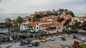 Image Portugal Houses Coast Palms Camara do Lobos, Madeira Cities