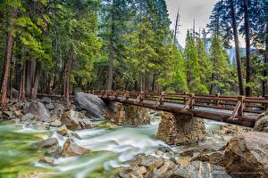 Image Rivers Bridge Stone Park USA Trees Yosemite California Nature
