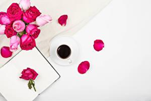 Bilder Rose Kaffee Weißer hintergrund Vorlage Grußkarte Tasse Blütenblätter Blüte Lebensmittel