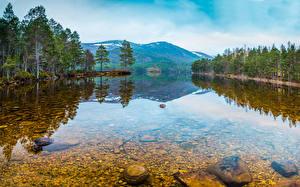 Wallpaper Russia Forest Lake Stone Karelia