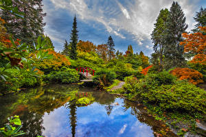 Images Seattle USA Gardens Pond Bridge Bush Trees Kubota Garden Nature