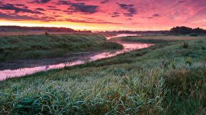 Photo Sunrise and sunset River Grass Fog