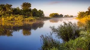 Pictures Sunrises and sunsets River Morning Shrubs Grass Fog