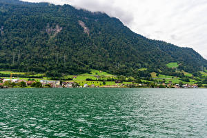 Pictures Switzerland Building Lake Mountains Forest Village village Arth, Lake Zug Nature
