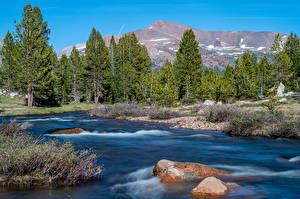 Sfondi desktop USA Montagna Parco Fiume Pietre Yosemite California Natura