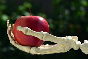 Hintergrundbilder Äpfel Bokeh Knochen Skelett Rot Hand