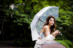 桌面壁纸,,亚洲人,散景,棕色的女人,傘,凝视,女孩,