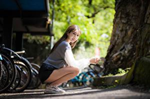 Fotos Asiatisches Unscharfer Hintergrund Posiert Sitzend Starren Mädchens