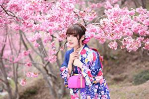 Bilder Asiatische Blühende Bäume Handtasche Kimono Blick Mädchens