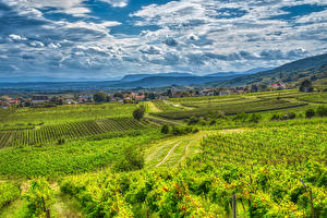 Pictures Austria Mountain Vineyard Clouds Alps HDR Gumpoldskirchen