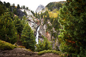 Pictures Austria Mountains Waterfalls Spruce Crag Obergurgl Tyrol Nature