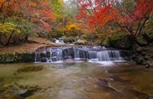 Pictures Autumn River Stones Moss