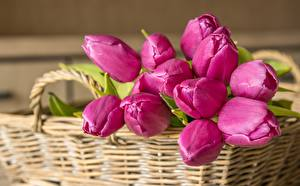 Picture Bouquets Tulip Wicker basket Pink color