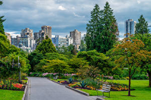 Images Canada Parks Building Vancouver Trees Bench Stanley Park Cities