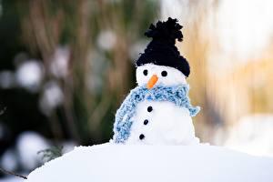 Picture Carrots Snowman Bokeh Winter hat Scarf