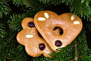 Image Closeup Cookies Heart Branches Spruce Carrot cake Food