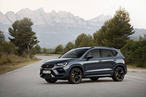 Fotos Cupra Grau Metallisch Crossover 2020-21 Ateca Worldwide Autos