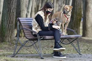 Bilder Hunde Maske Coronavirus Bank (Möbel) Brünette Zwei Sitzend Tiere Mädchens