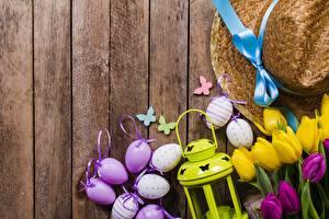Wallpapers Easter Tulips Egg Wood planks Hat Flowers