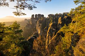Wallpaper Germany Mountain Crag Trees Basteigebiet Nature