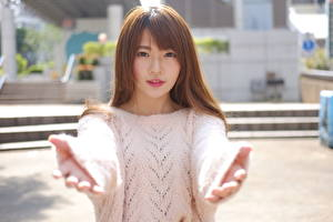 Pictures Gestures Blurred background Brown haired Glance Sweater Hands female