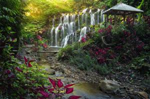 Hintergrundbilder Indonesien Tropen Wasserfall Stein Felsen Bäche Bali Natur