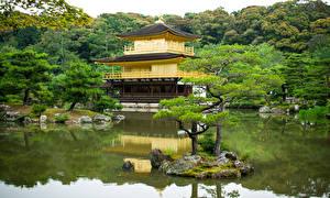 Picture Japan Kyoto Temple Pond Trees Kinkakuji