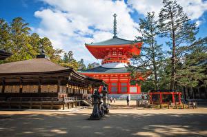 Pictures Japan Temple Trees Koyasan, Wakayama Cities