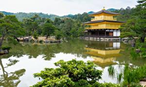 Pictures Japan Temple Kyoto Pond Trees Kinkaku-ji Cities