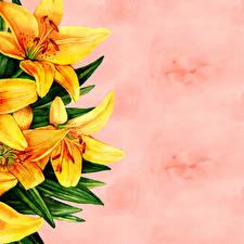 Hintergrundbilder Lilien Gezeichnet Papier Vorlage Grußkarte Blumen