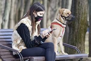 Pictures Masks Coronavirus Bench 2 Brown haired Sitting Hands Smartphones female