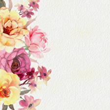 Bilder Rose Gezeichnet Papier Vorlage Grußkarte Blumen