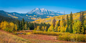 Picture USA Autumn Mountains Landscape photography Trees Colorado Nature