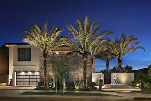 Pictures USA California Mansion Night time Palm trees Irvine Cities