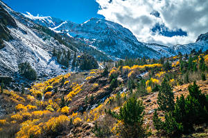 Images USA Mountains Autumn California Clouds Trees Lundy Canyon Nature