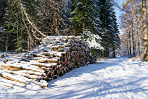 Images Winter Forests Snow Wood log