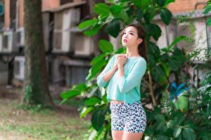 Fondos de Pantalla Asiático Bokeh Pantalón corto Mano Chicas imágenes