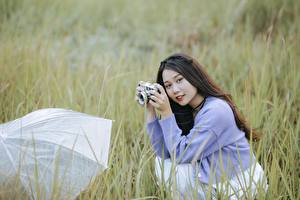 Photo Asiatic Brown haired Staring Parasol Grass Sweater Hands Camera Sitting young woman