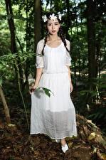 Bilder Asiatische Brünette Zopf Kranz Kleid