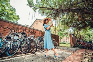 Bakgrundsbilder på skrivbordet Asiatisk Klänning Hatt Bicykel ung kvinna