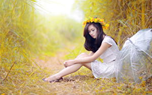 Picture Asian Grass Sitting Wreath Parasol Brunette girl Hands Legs Side Girls