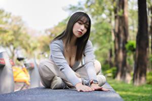 Bakgrunnsbilder Asiatisk Posere Sitter Ser Uklar bakgrunn ung kvinne