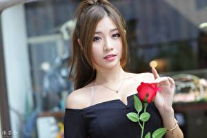 Images Asian Roses Bokeh Brown haired Glance Hands Girls