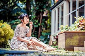 Fotos Asiatische Sitzen Kleid Bein Blick Bokeh junge frau
