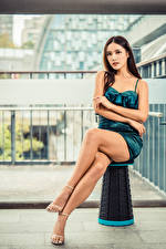 Pictures Asiatic Sitting Legs Frock Glance female