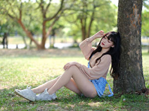 Pictures Asian Sit Legs Trunk tree Blurred background female