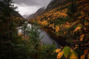 Bilder Kanada Berg Herbst Park Quebec  Natur