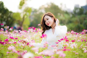 Photo Cosmos plant Asian Brown haired Smile Hands Girls